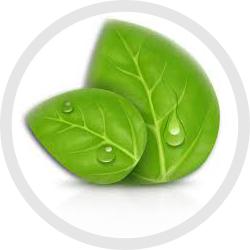 vikon-engenharia-ambiental-EIA-RIMA-Inventario-ambiental-supressao-vegetal-ibama-conama-cprh